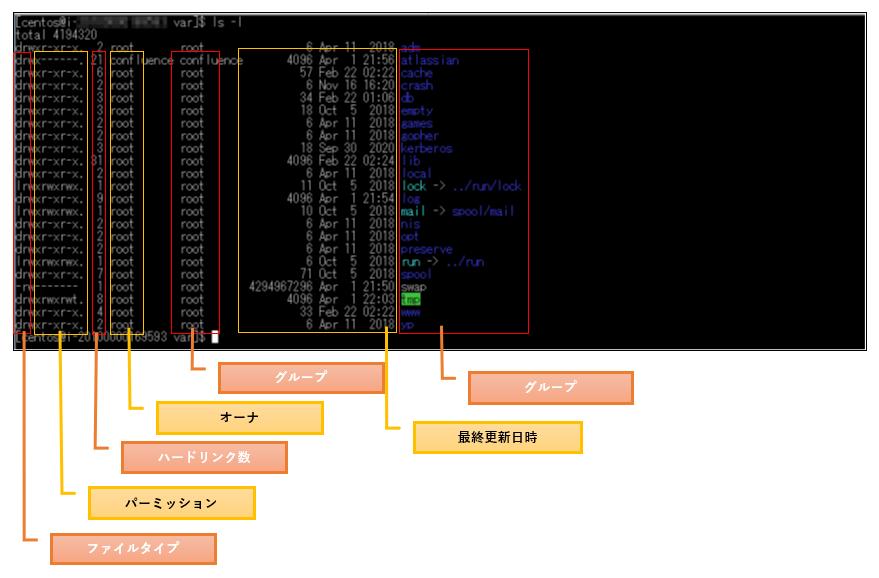 lsの詳細表示の解説図